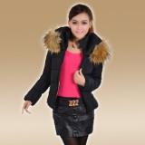 韩版羽绒棉服女短款 棉衣防寒服女款 新款冬装修身外套包邮